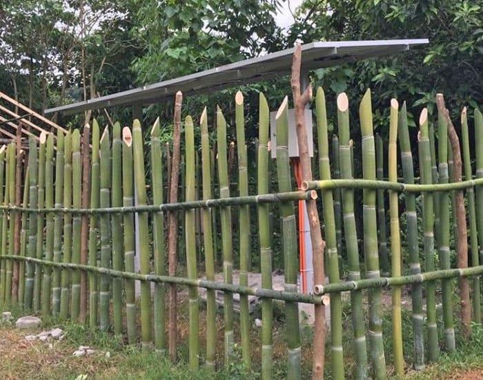 Ökologische nachhaltige Landwirtschaft, Agri-Farm im Kinderdorf auf den Philippinen, jetzt Spenden